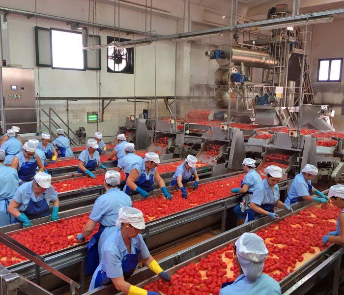 Rinnovate le convenzioni occupazionali 2020 per i dipendenti Conserve Italia di Pomposa